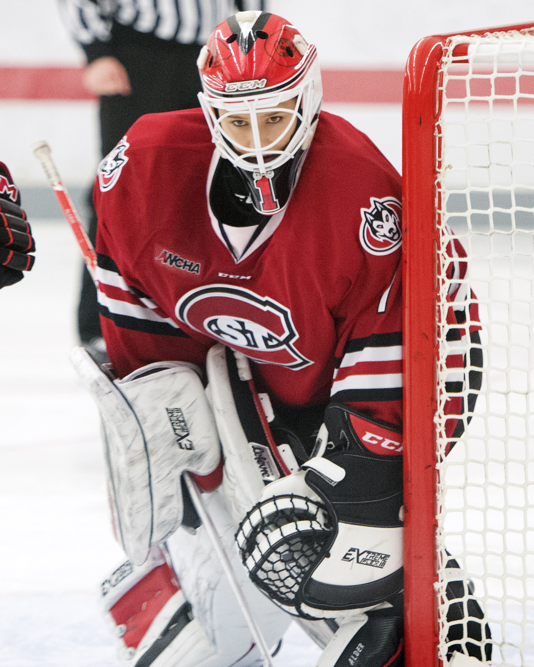 Buckeyes Come Back Against St Cloud State 3 2 Pro Hockey News