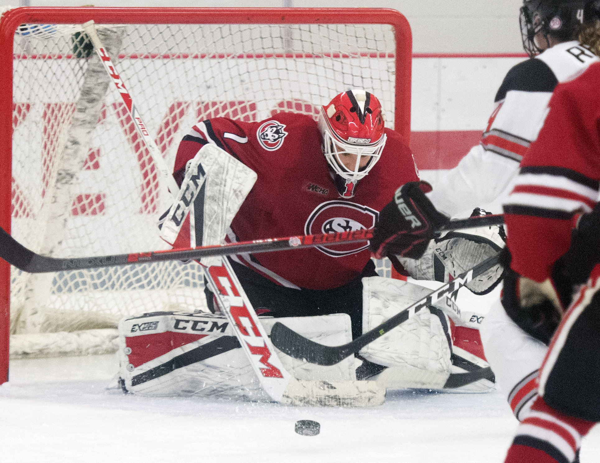 Buckeyes Come Back Against St  Cloud State 3-2 | Pro Hockey News